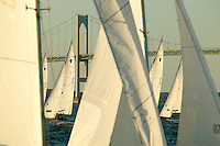 USA, Newport, RI - A fleet of shields sailboats fill the frame,crossing in front of the Newport Bridge. They are racing in a weelky series that takes plac eduring the summer on Narragansett bay.