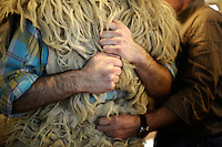 """A """"Joaldun"""" gets ready on January 27, 2014 at the village of Ituren, Basque Country. Joaldun groups perform an ancient traditional carnival at the villages of Ituren and Zubieta during two days, carrying sheep furs and big cowbells in their backs and making sound them in order to wake up the earth, to ask for a good new year, a good harvest and also to keep away the bad spirits. (Ander Gillenea / Bostok Photo)"""