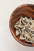 Stock Photo of Dried Eucalyptus Leaves
