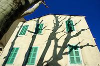 Plane tree (Platanus) casting shadows on a quaint building on Boulevard Eugene Pierre, Marseille, France.