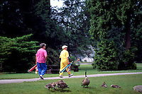Burnaby, BC, British Columbia, Canada - Active Senior Golfers walking with Golf Clubs past Canada Geese, at Central Park Golf Course