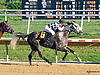 Throughleap winning at Delaware Park on 9/23/15
