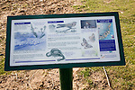 Information board about natural history of the Sandlings heathland at Sutton Heath, Suffolk, England