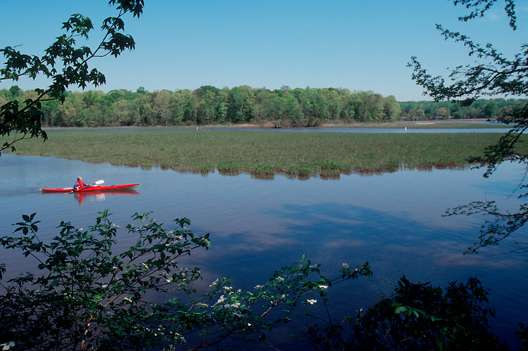 Sea Kayaking, the Potomac River Trail, the Potomac River, Chesapeake Bay, Virginia, USAMan kayaking Potomac River Trail, Washington DC area, Chesapeake Bay, Virginia,