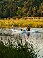 Man observing bird from a kayak, Eastham, Cape Cod, MA