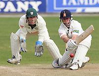 Cricket 2007-04