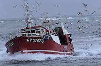 Europe/France/Bretagne/29/Finistère/Saint-Guénolé: Chalutier rentrant au port par gros temps