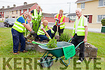 Ballybunion Tidy Towns members are busy preparing the town for this years Tidy Towns competition as judging will begin in the coming weeks. Pictured from l-r were: Tom Scanlon, Carmel Nash, Christina Kennelly, Eileen Beasley and Noel Nash.