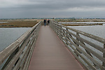 Boardwalk bridge at Bolsa Chica Ecological Reserve