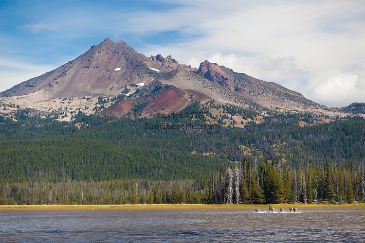 Sparks Lake is a lake in Deschutes County, Oregon. Many of Deschutes County's other natural sites can be seen from the lake, such as Mount Bachelor. There are seven mountains near the lake. Including Three Sisters, Broken Top, and Mount Jefferson. A herd of Mule Deer running across the lake.