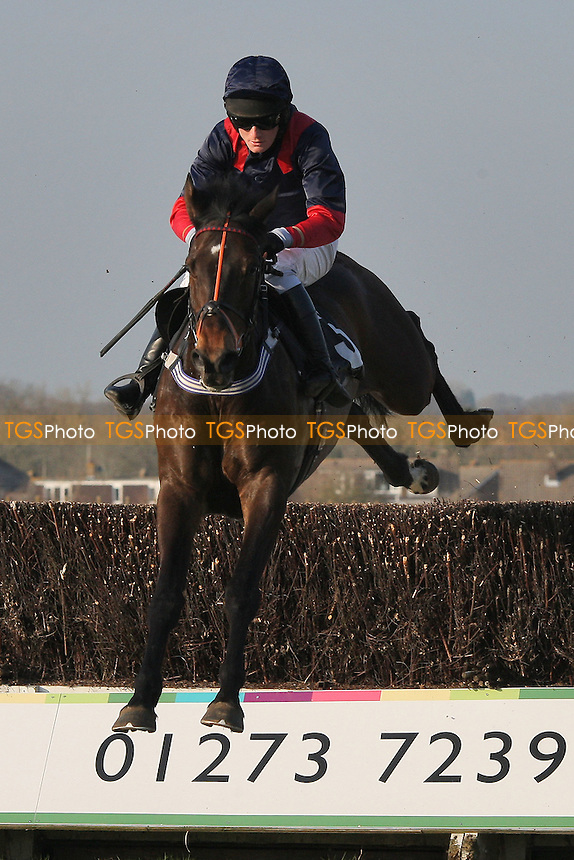 Marleno ridden by Charlie Poste in action during the Plumpton Annual Members Handicap Chase - Horse Racing at Plumpton Racecourse, East Sussex - 12/03/12 - MANDATORY CREDIT: Gavin Ellis/TGSPHOTO - Self billing applies where appropriate - 0845 094 6026 - contact@tgsphoto.co.uk - NO UNPAID USE.