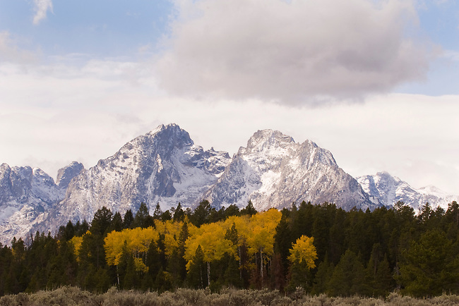 Fall view of mountains in Yellowstone National Park, Wyoming, USA, October 2 2007.  Photo by Gus Curtis.