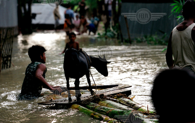 A man ferrying his goat to dry land. Monsoon rains caused flooding in 40 of Bangladesh's 64 districts, displacing up to 30 million people and killing several hundred.