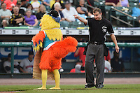 Umpire Brad Myers gestures to the The Famous San Diego Chicken to take over as umpire for on field entertainment during a game between the Indianapolis Indians and Rochester Red Wings on July 26, 2014 at Frontier Field in Rochester, New  York.  Rochester defeated Indianapolis 1-0.  (Mike Janes/Four Seam Images)
