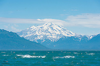View of Redoubt Mountain, an active volcano on the Alaska Peninsula, from the shore of Duck Island, The Cook Inlet, Alaska.