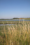 Butley Creek river and marshes, Butley, Suffolk, England