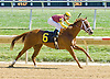 Yes I'm Awesome winning at Delaware Park 9/15/12
