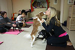 NEW YORK  -  MARCH 04, 2009:  Katie Bell's dog.Riley greets doga instructor Kari Herendorf at the beginning of a dog yoga class at the Bideawee Learning Center on March 4, 2009 in New York City.  (PHOTOGRAPH BY MICHAEL NAGLE)