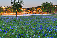 We capture this image as the sun set over this field of bluebonnets in the Texas Hill country along the river just as the sunset rays was captured and reflected back from the glass on someone window across the water.  It was kind of a cool capture where you get the sun reflections at the river.