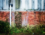 Side of derelict buidling with drainpipe