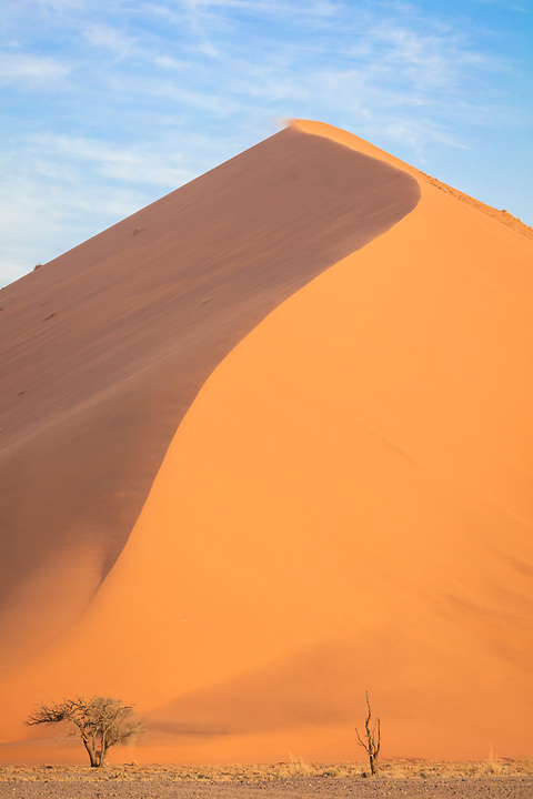There Are Many Of These Large Sand Dunes At Sossuvlei.  This One Is Dune #40.