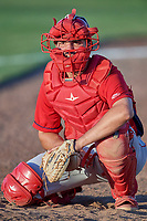 Anthony Mulrine (36) of the Orem Owlz works the bullpen during the game against the Ogden Raptors at Lindquist Field on July 27, 2019 in Ogden, Utah. The Raptors defeated the Owlz 14-1. (Stephen Smith/Four Seam Images)