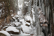 Flume Gorge in Lincoln, New Hampshire USA during a snow-storm. Located in Franconia Notch, Flume Brook travels through this gorge. Blowing snow can be seen in the photo.