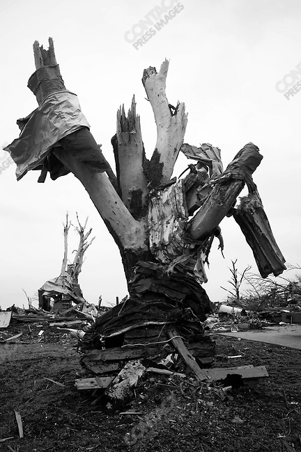 Sheets of metal molded onto a tree stripped of its bark and leaves in Joplin, Mo. May 25, 2011...