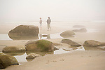 Women Walking along a Rocky and Foggy Beach on the Coast of Maine