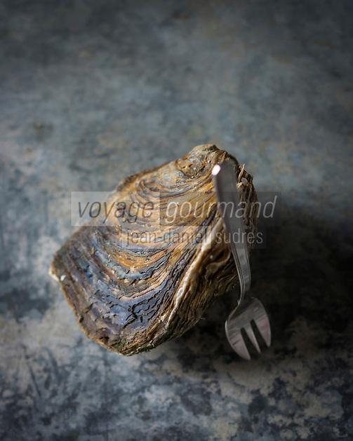 Europe, France, Bretagne, Finistère (29), Prat ar Coum: les huitres plates  de Prat ar Coum d'Yvon Madec - Produit rare, l'huître baptisée  Pied de Cheval  - en rapport avec sa position qui laisse la trace d'un sabot sur le sable - est une huître sauvage hors d'âge (entre 10 et 20 ans) Stylisme Valérie Lhomme   //  France, Finistere, Prat ar Coum, Yvon Madec's Prat ar Coum  European flat oyster,  this rare oyster has been named : Pied de Cheval, (horse's hoof) – because of the way it leaves a trace in the shape of a hoof on the sand – and is a wild and ancient (between 10 and 20 years) oyster. styling by Valerie Lhomme