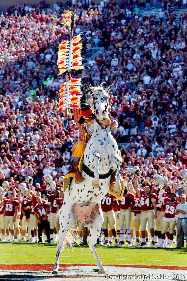 TALLAHASSEE, FL 10/22/11-FSU-MARY102211 CH-Florida State Mascot Osceola portrayed by Drake Anderson plants the spear at midfield atop Renegade prior to the Maryland game Saturday at Doak Campbell Stadium in Tallahassee. .COLIN HACKLEY PHOTO