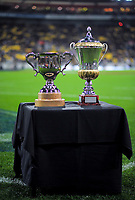 The series trophies stand on display before the Steinlager Series international rugby match between the New Zealand All Blacks and France at Westpac Stadium in Wellington, New Zealand on Saturday, 16 June 2018. Photo: Dave Lintott / lintottphoto.co.nz