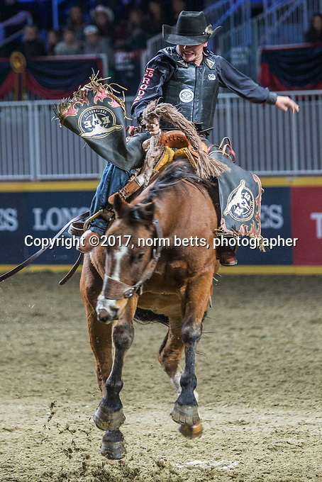 Royal Rodeo action at the Royal Agricultural Winter Fair in Toronto, Ontario, Canada<br />