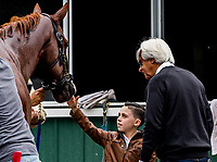 ELMONT, NY - JUNE 07: With trainer Bob Baffert supervising, Devon Divirgilio, 8, from Long Island gets to meet Justify as he gets a bath after working out Thursday for the 150th running of the Belmont Stakes at Belmont Park on June 7, 2018 in Elmont, New York. (Photo by Scott Serio/Eclipse Sportswire/Getty Images)