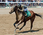 Fleet Irish (no. 5) wins Race 4, Aug. 5, 2018 at the Saratoga Race Course, Saratoga Springs, NY.  Ridden by Kendrock Carmouche and trained by Robert Falcone, Jr., Fleet Irish finished a head in front of Rockford (no. 9).  (Photo credit: Bruce Dudek/Eclipse Sportswire)