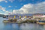 Seattle, Washington: Seaplanes moored on Lake Union along Eastlake