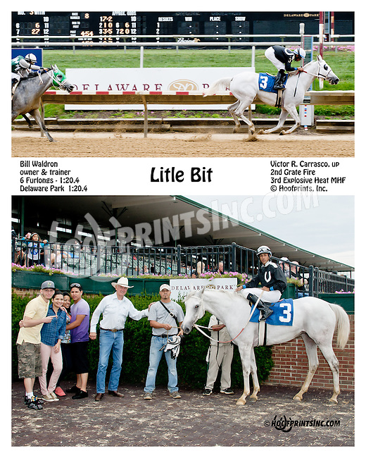 Litle Bit winning before being disqualified and placed second at Delaware Park on 9/21/13