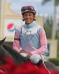 HALLANDALE BEACH, FL -DECEMBER 03:   #1 Chepstow (ON) with jockey Edgard Zayas  on board,waits to enter the winners' circle after winning the $110K  Claiming Crown Iron Horse Stakes  at Gulfstream Park on December 03, 2016 in Hallandale Beach, Florida. (Photo by Liz Lamont/Eclipse Sportswire/Getty Images)