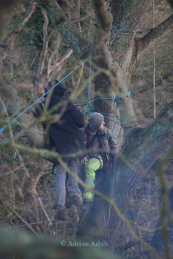 In the trees the early morning, as the baliffs arrive   Decoy Pond ,  Bexhill Hasting bypass protest.