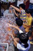 Asie/Malaisie/Bornéo/Sarawak/Kuching: Le marché étal de poissons rouges