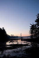 A mist rises over a marsh at dawn in Killarney Provincial Park, Ontario, Canada