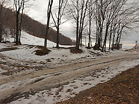FOREST_LOCATION_90073