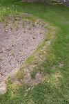 rain garden berm