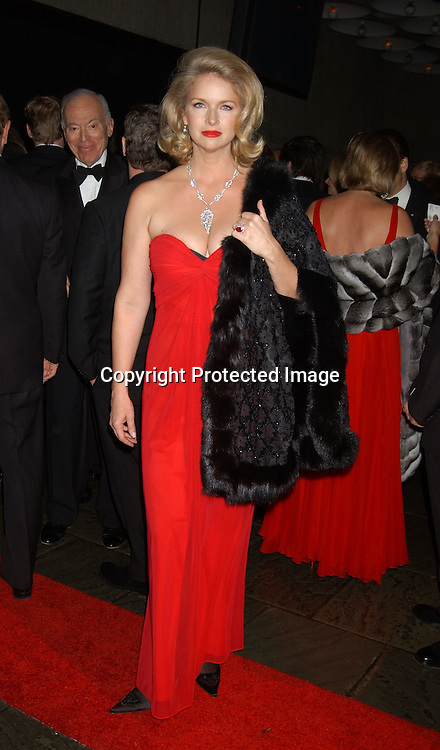 Donna Dixon                               ..at the 2003 Whitney Museum of American Art Gala honoring Ellsworth Kelly's 80th birthday  on October 20, 2003 . Photo By Robin Platzer, Twin Images