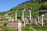 The Temples of Dea Roma and Divus Julius Caesar (Temenos),  Ephesus
