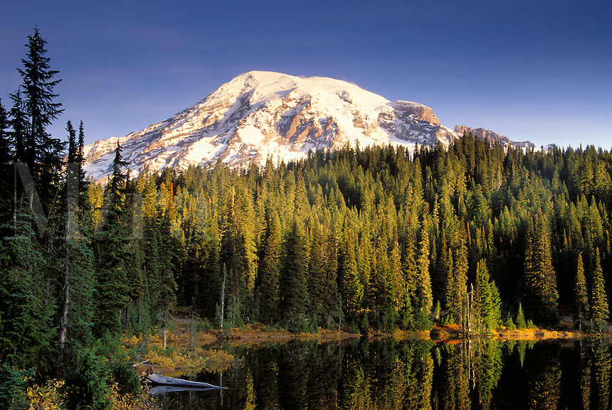 Mount Rainier reflected on Reflection Lake at sunrise, Reflection Lakes, Mount Rainier National Park, Lewis County, W