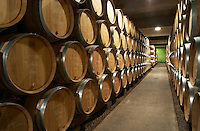 The modern barrel aging cellar with barriques pieces with maturing wine, Maison Louis Jadot, Beaune Côte Cote d Or Bourgogne Burgundy Burgundian France French Europe European