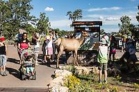 Grand Canyon Visitor's Center, South Rim, Arizona.