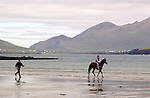 BALLYFERRITER RACES-DINGLE 5-5-02<br /> Horse racing has taken place on Ballyferriter Strand in County kerry only once in the last 50 years and that was in 1972, but thousands turned out to the picturesque beach outside Dingle in County Kerry to witness the revival on Sunday. <br /> Our picture shows  one eager trainer and horse excerising before the race.<br /> Picture by Don MacMonagle