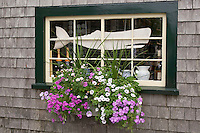 cottage window, Siasconset, Nantucket, MA